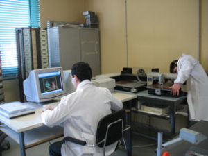 Laboratorio TDP